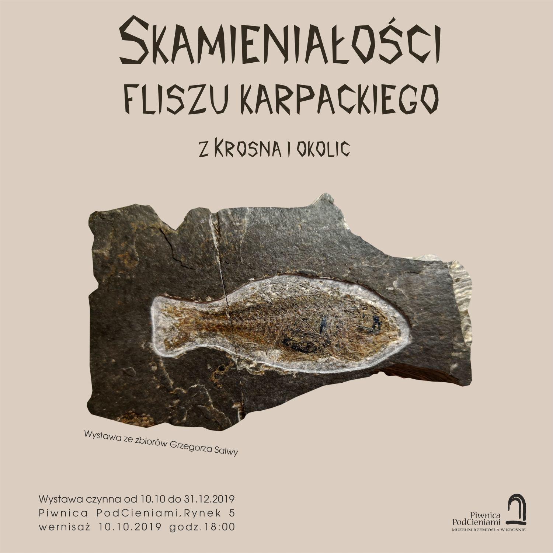 plakat wystawy Grzegorza Salwy