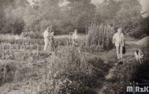 Widok na ogródki działkowe. Kilka osób spaceruje, po prawej stronie biegnie pies.